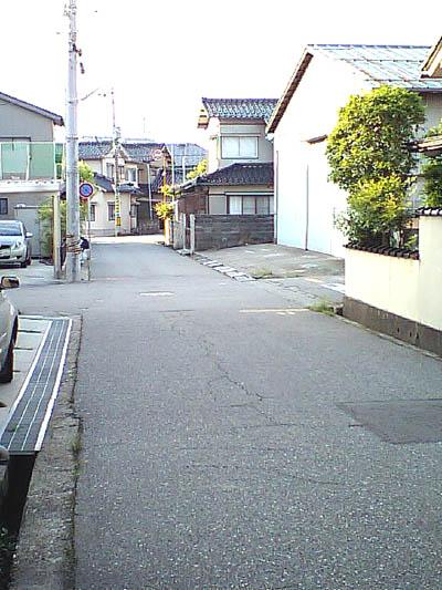 apatoyoko.JPG